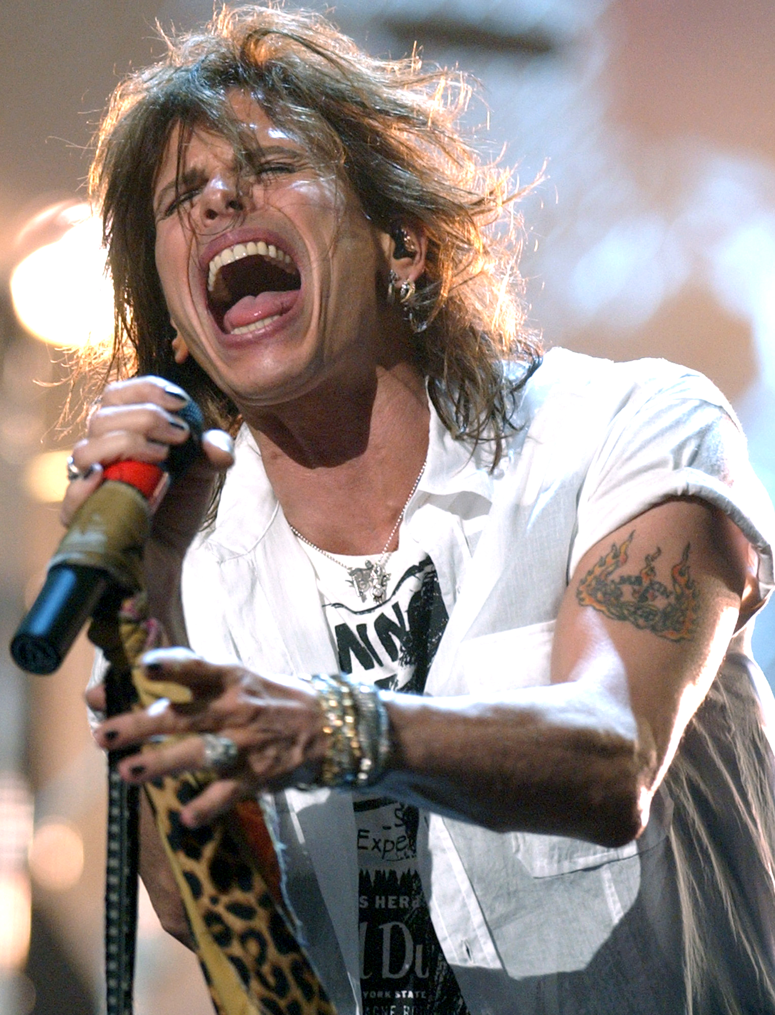 http://tvcinemaemusica.files.wordpress.com/2009/08/steven-tyler.jpg