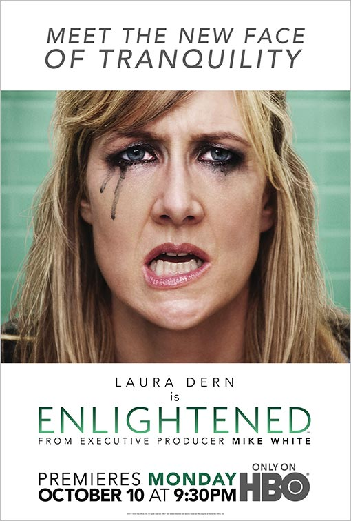 Download Enlightened S01E01 HDTV AVI RMVB Dublado